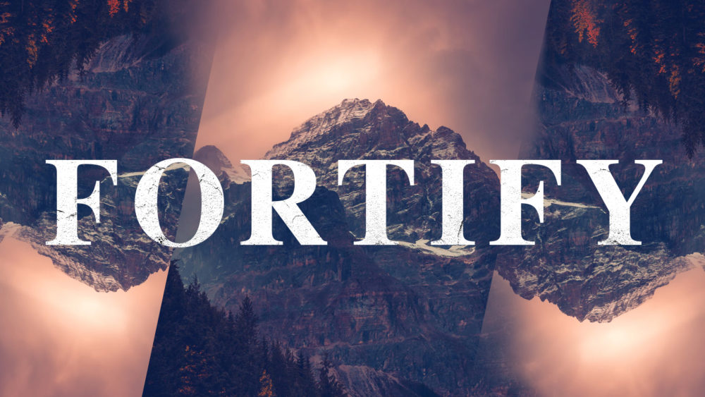Fortify:Reason for Hope Image