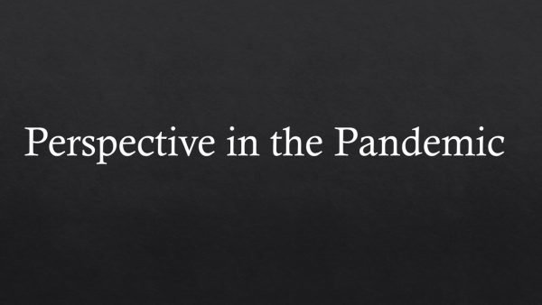 Perspective in the Pandemic: